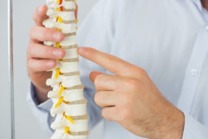 Chiropractic and Rear-end Collisions